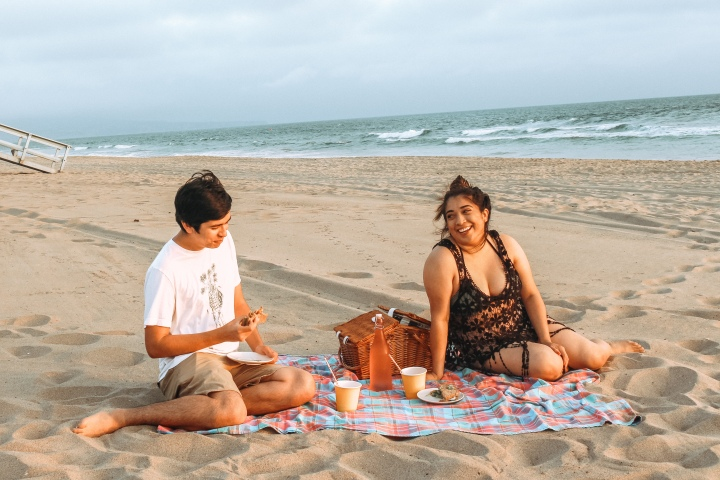 Picnic in theSummer